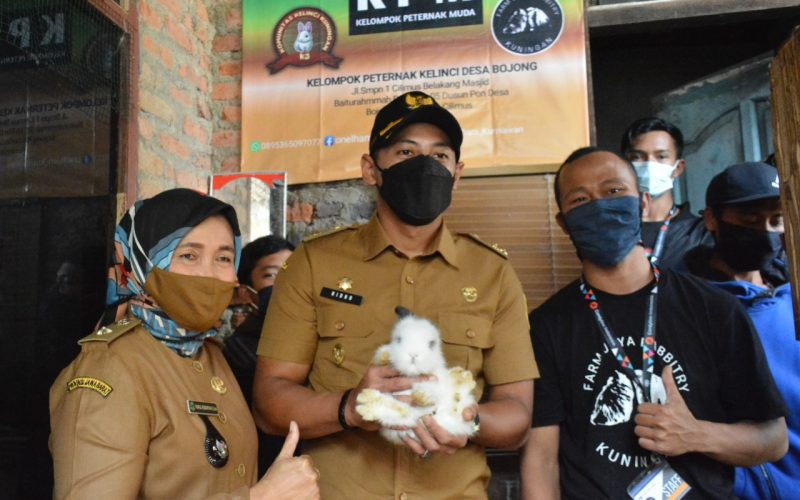 Bisnis Ternak Kelinci di Kabupaten Kuningan Perlu Dikembangkan